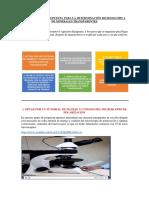 Informe de La Propuesta Para La Determinación Micrsoscopica de Minerales Transparentes