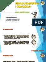 ALGORITMOS-GENETICOS