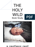 Holy Wild Book Study Part 1 - Preface to Ch 2