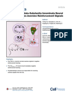 A Central Amygdala-Substantia Innominata Neural Circuitry Encodes Aversive Reinforcement Signals