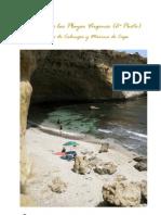 Playas vírgenes 2