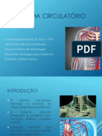 Histologia - Sistema Circulatório (1)