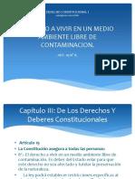 DERECHO CONSTITUCIONAL I. Derecho a vivir en un medio ambiente libre de contaminacion..pptx