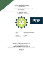laporan praktikum asam nukleat