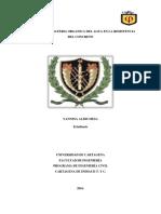 Efectos de La Materia Organica Del Agua en La Resistencia Del Concreto