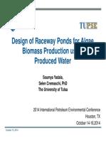 Yadala, Soumya - Design of Raceway Ponds for Biomass Production