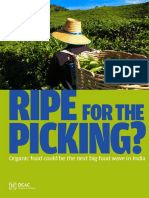 Ripe for the Picking_India