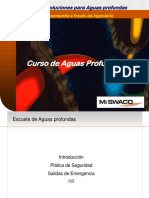 1 DWMS Introduction 2005 (Spanish Final)