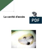 Le Traitement Endodontique