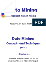 Frequent Itemset Mining