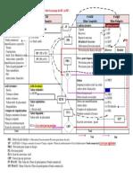 PASSAGE DU-BC-au-BF.pdf