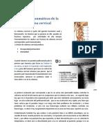 Lesiones Traumáticas de La Columna Cervical