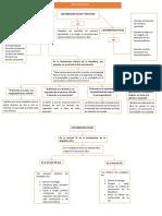Mapa Conceptual de Derechos Politicos - Styvib Italo Fuentes Muñoz