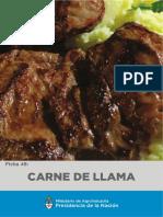 Ficha 48 Carne de Llama