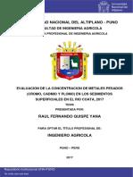 Quispe Yana Raul Fernando (2)