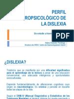 DISLEXIA. PALMA 2010.pdf