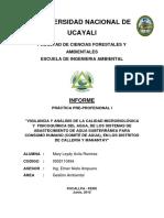 Informe Final Practica Desa