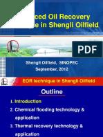 04 - Yong - Shengli Oil Field SINOPEC-En