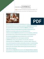 DEFINICIÓN DEANIMAL.docx