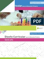 DisenÞo Curricular PBA Sexto