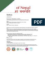 FloraOfNepal Rosaceae Edition 1 - Sorbus