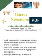 2. IKTERUS NEONATORUM
