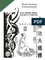 camisa de hierro 2.pdf