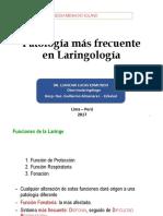 Exposicion de Laringe RP(Degraba)