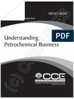 Mdso805 Understanding Petrochemical Business