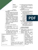 Resumen Babaco PDF