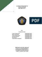 Laporan Praktikum kelarutan 1.docx