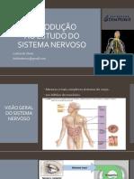 1 - Introdução Ao Estudo Do Sistema Nervoso - Letícia de Abreu