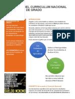 Boletin-Curriculum004-desempeños