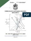 Topicos en Macroeconomia Dinamica