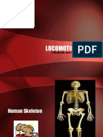 Locomotion System