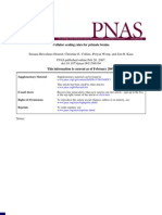 Cellular Scaling Rules for Primate Brains - Suzana Herculano-Houzel - NeurociêNcia