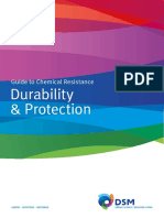 DSM GuideChemicalResistance_DurabilityProtection New 2012