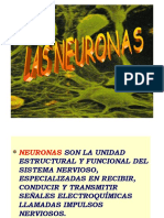 Neuronas 2010