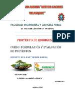 INTRODUCCIÓN de Biogas Proyecto