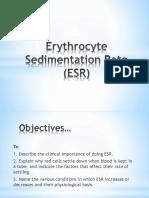 Erythrocyte Sedimentation Rate (ESR)