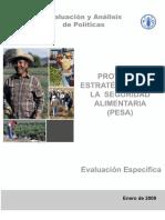 Evaluacion_PESA.pdf