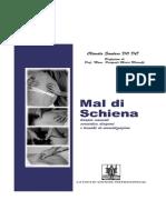 Mal Di Schiena - Terapia Manuale, Semeiotica, Diagnosi e Tecniche Di Normalizzazione