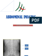 Skill Lab - Abdominal Imaging - Blok 17