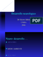 Bases Neurologicas