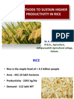 METHODS TO SUSTAIN HIGHER PRODUCTIVITY IN RICE IN TAMIL NADU