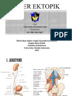 Ektopik Ureter Ppt