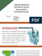 Exposicion(8) HIDROINFORMÁTICA Hidraulica