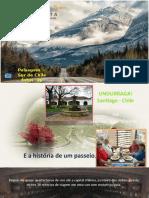VINOS_UNDURRAGA (1).ppsx