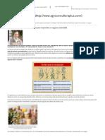 Aromáticas y Medicinales_ Guía Para Emprender Un Negocio Sustentable _ ACP Agroconsultora Plus