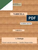 VARICELA.pptx